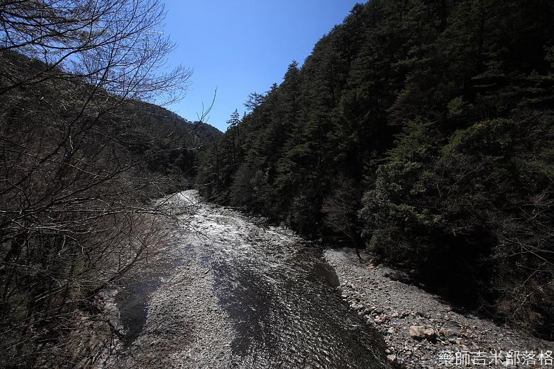 2014_Sakura_287