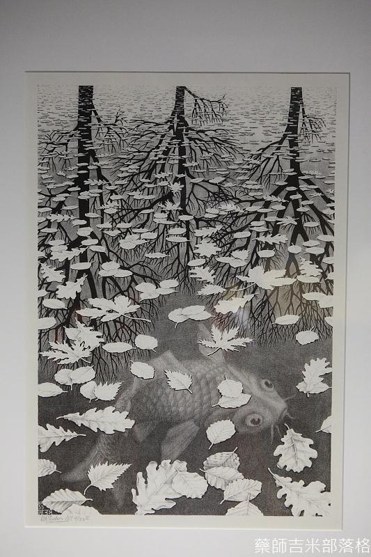 Escher_062.jpg