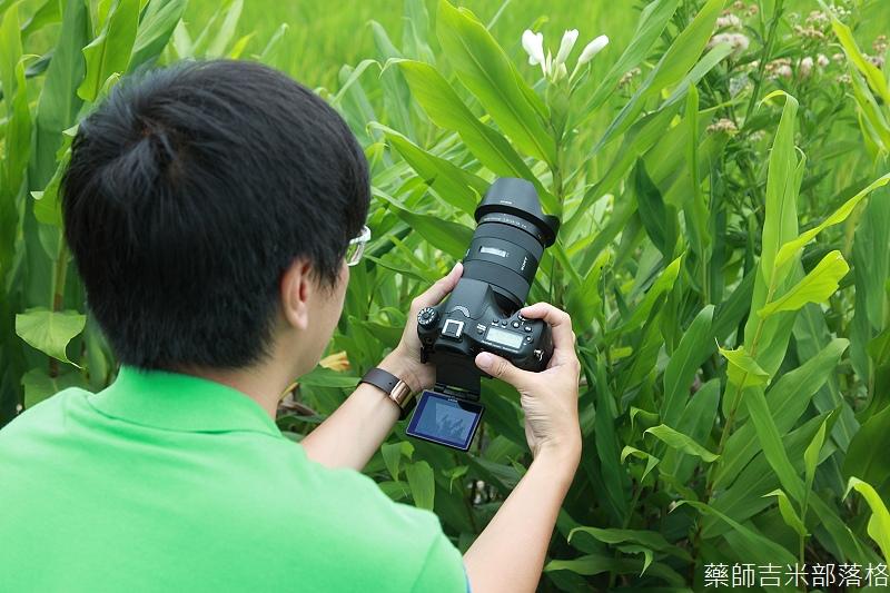 Sony_A77_MK2_119.jpg