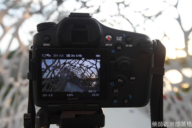 Sony_A77_MK2_229.jpg