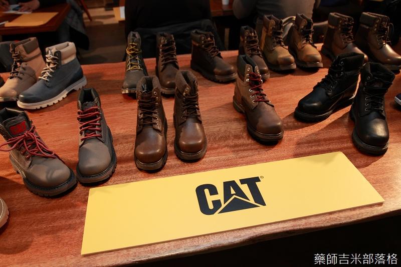 CAT_006.jpg