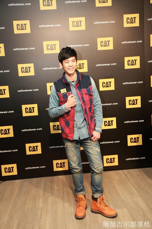 CAT_026.jpg