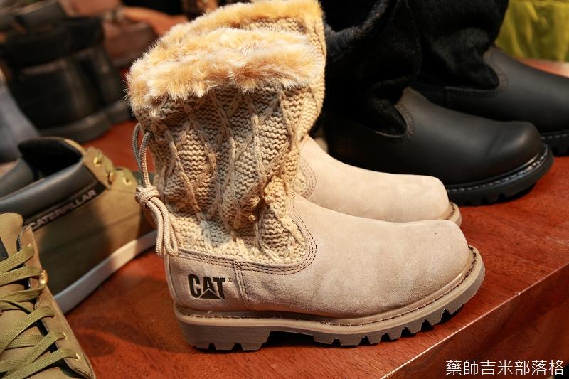 CAT_116.jpg