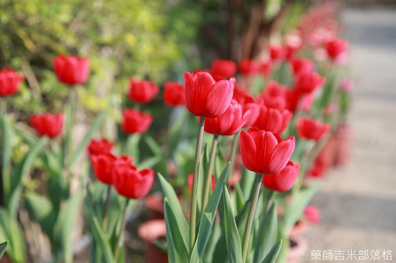 Nanyuan_farm_015.jpg