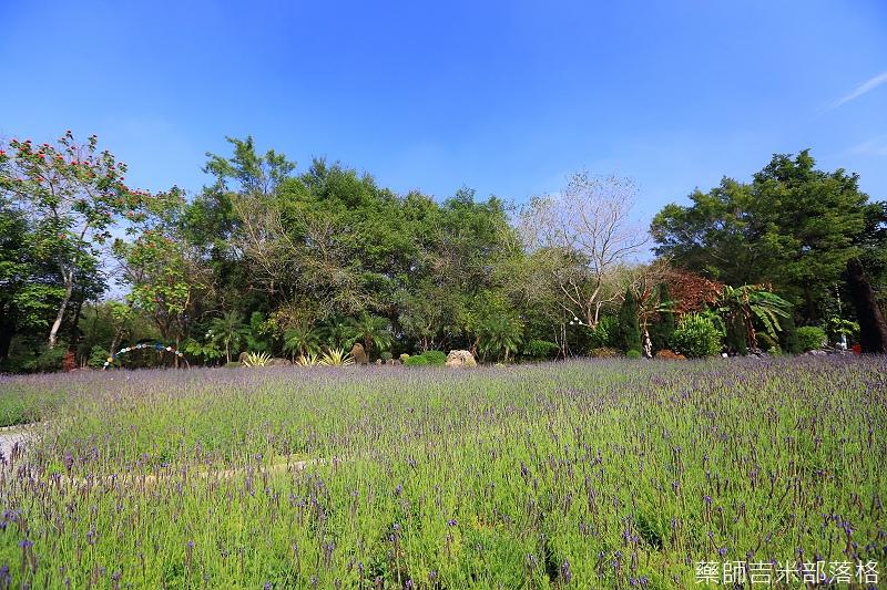 Nanyuan_farm_069.jpg