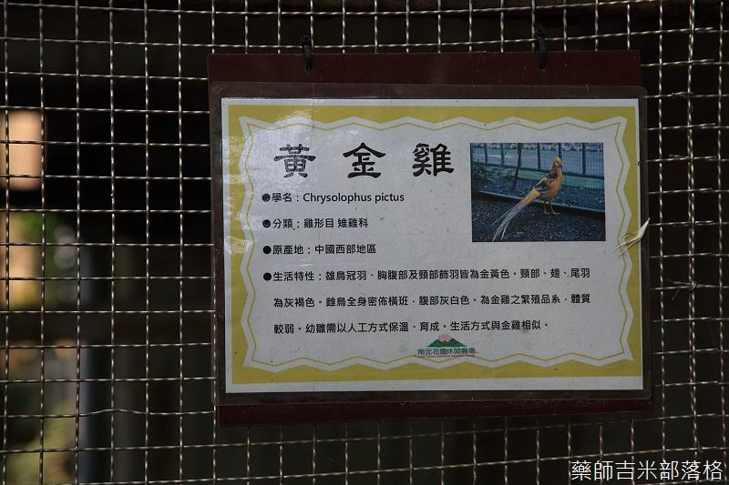 Nanyuan_farm_144.jpg