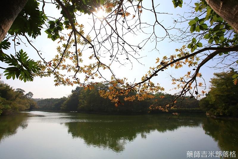 Nanyuan_farm_164.jpg