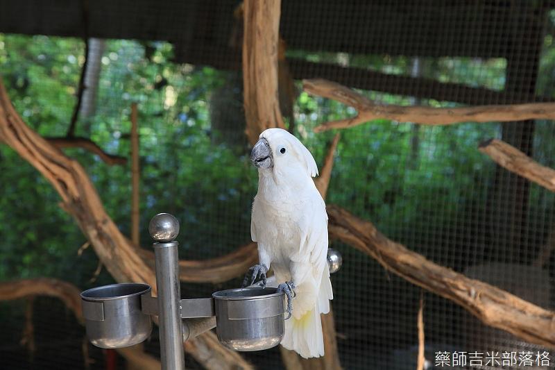 Nanyuan_farm_182.jpg