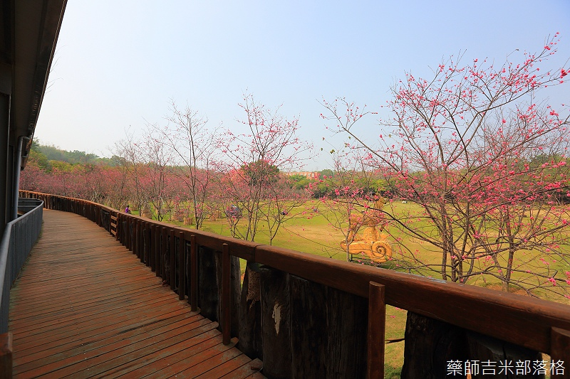 Nanyuan_farm_520.jpg