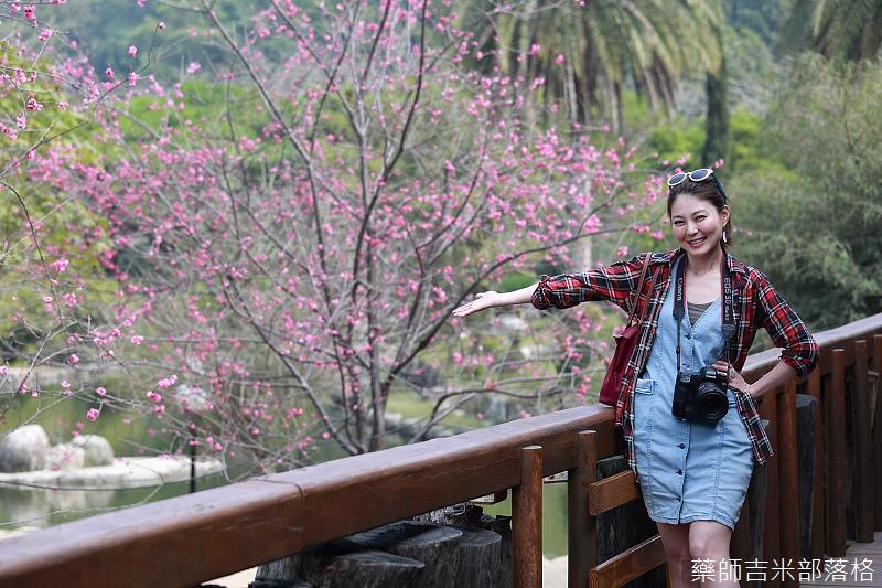 Nanyuan_farm_538.jpg