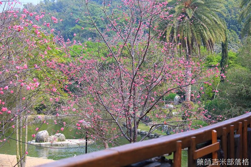 Nanyuan_farm_541.jpg