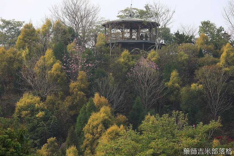 Nanyuan_farm_743.jpg