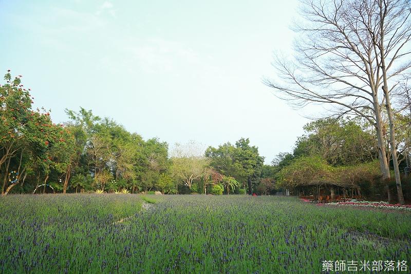 Nanyuan_farm_909.jpg