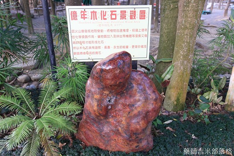 Nanyuan_farm_959.jpg