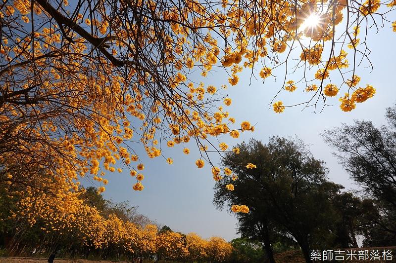 Tainan_150303_227.jpg