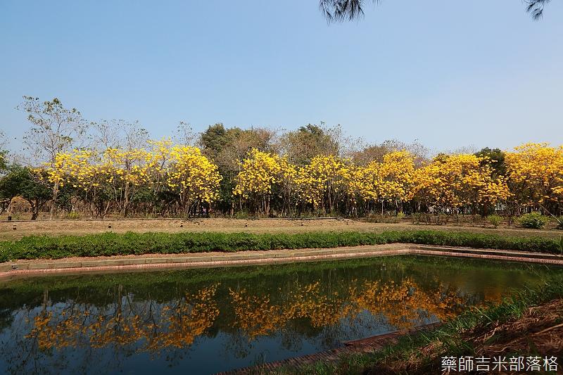 Tainan_150303_342.jpg
