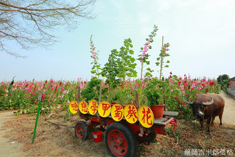 Tainan_150307_071.jpg