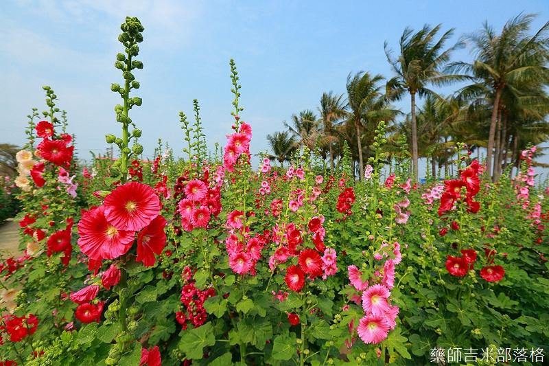 Tainan_150307_091.jpg