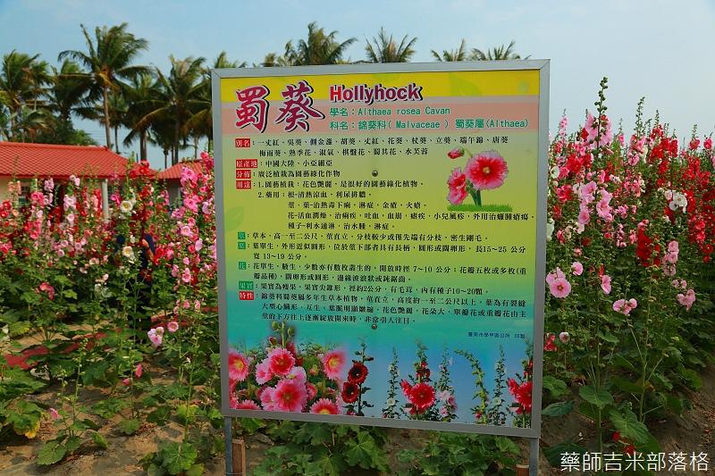 Tainan_150307_175.jpg