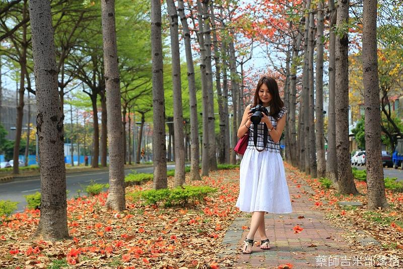 Tainan_150308_088.jpg