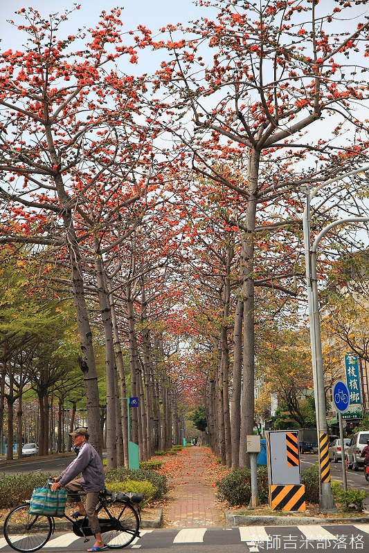 Tainan_150308_692.jpg