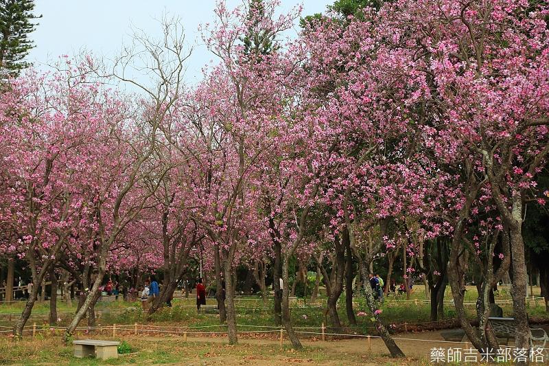 Tainan_150308_455.jpg