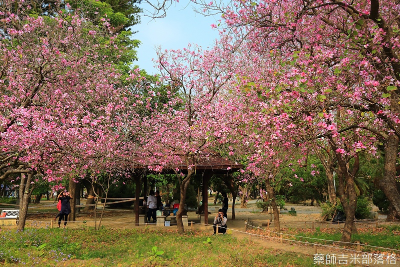 Tainan_150308_515.jpg