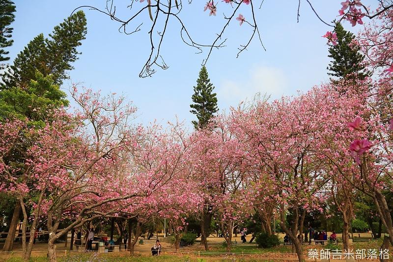 Tainan_150308_518.jpg