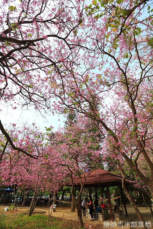 Tainan_150308_541.jpg