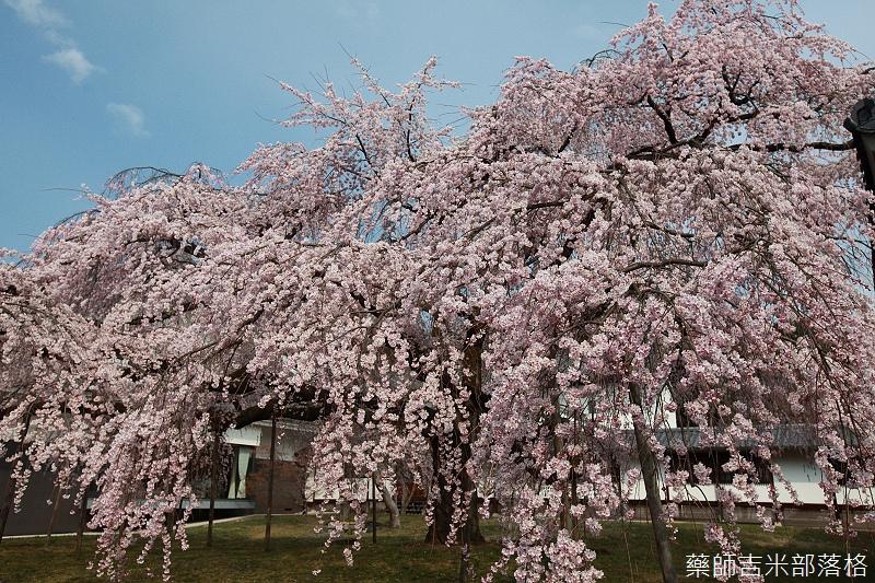 Kyoto_08_0461.jpg
