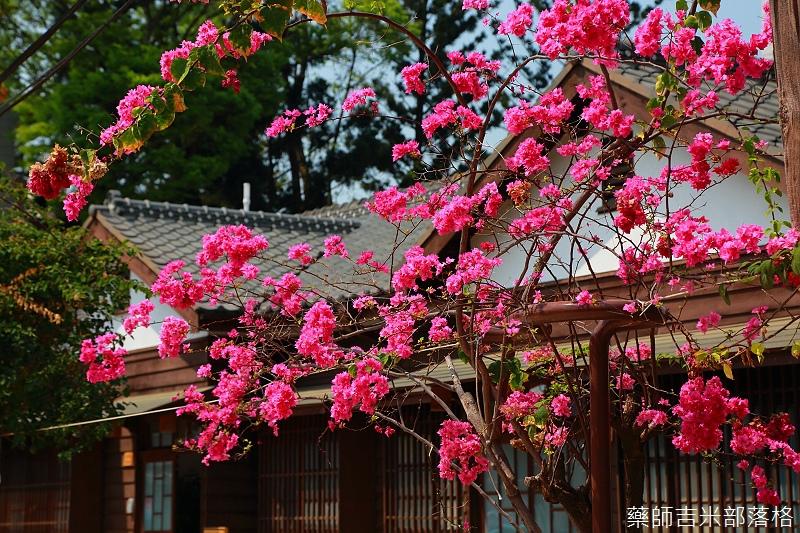Chiayi_150318_096.jpg