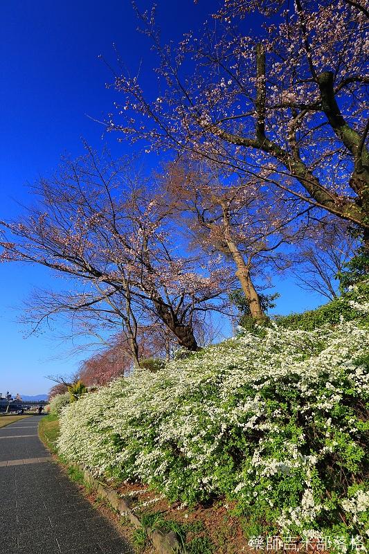 Kyoto_150328_045.jpg