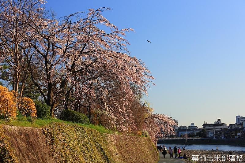 Kyoto_150328_063.jpg