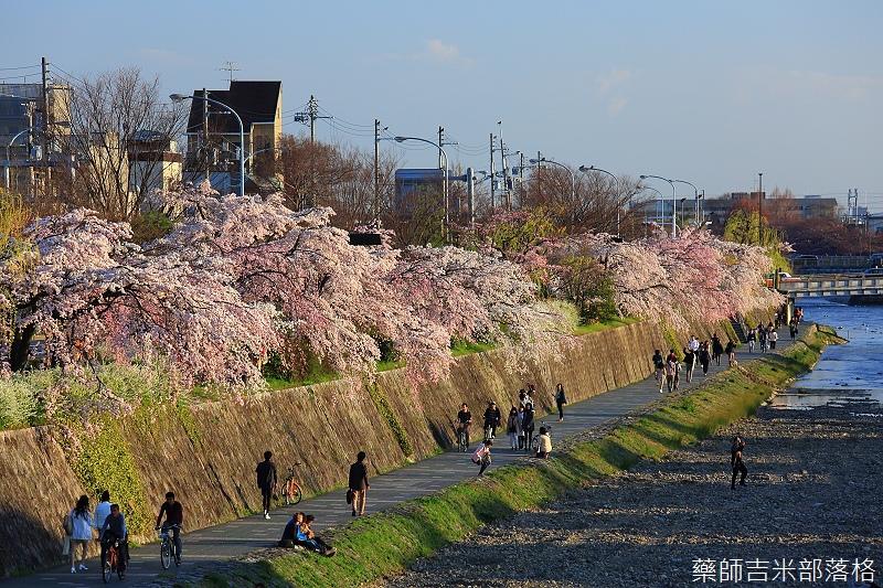Kyoto_150328_148.jpg