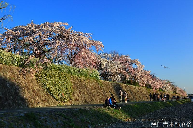 Kyoto_150328_165.jpg