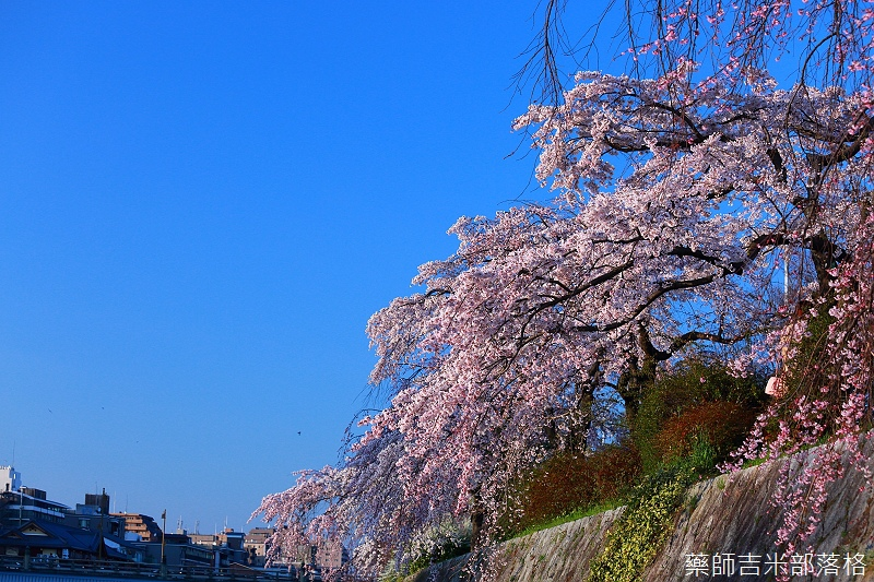 Kyoto_150328_204.jpg