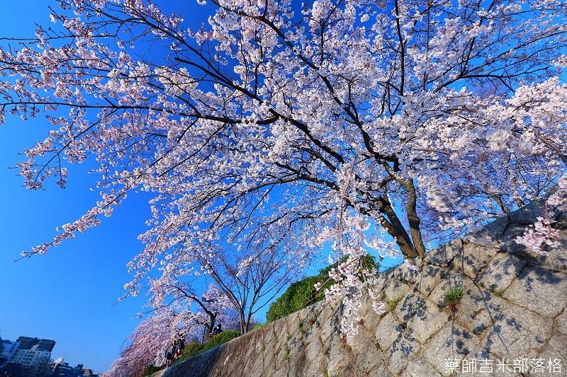 Kyoto_150328_222.jpg
