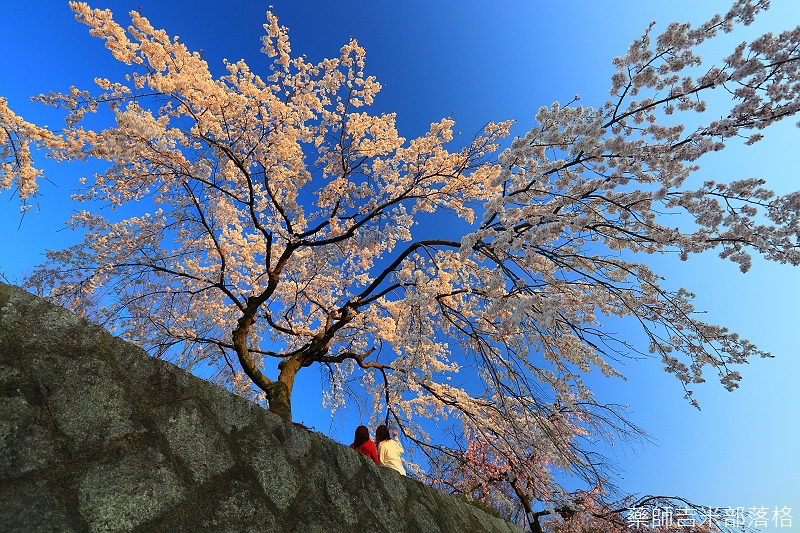 Kyoto_150328_253.jpg