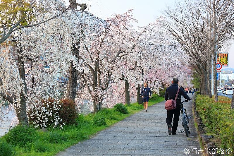 Kyoto_150328_347.jpg
