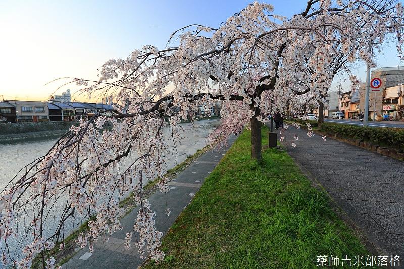 Kyoto_150328_353.jpg