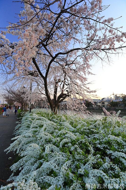 Kyoto_150328_362.jpg