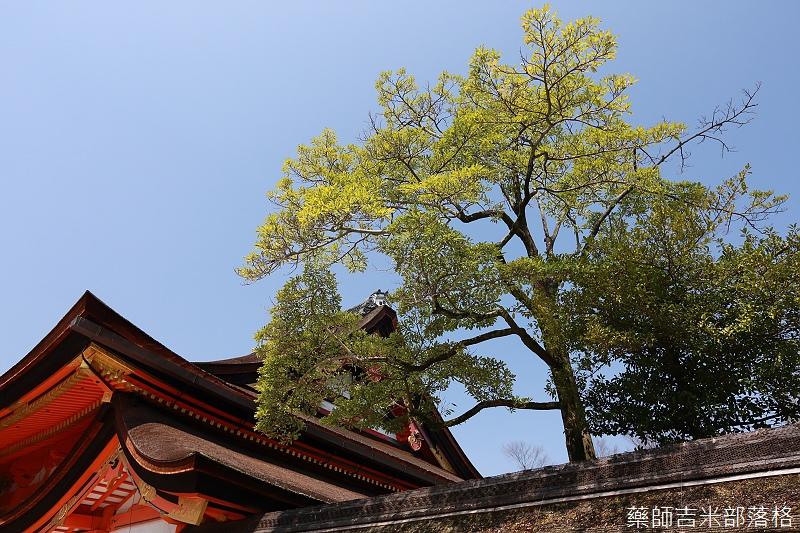 Kyoto_150330_0033.jpg