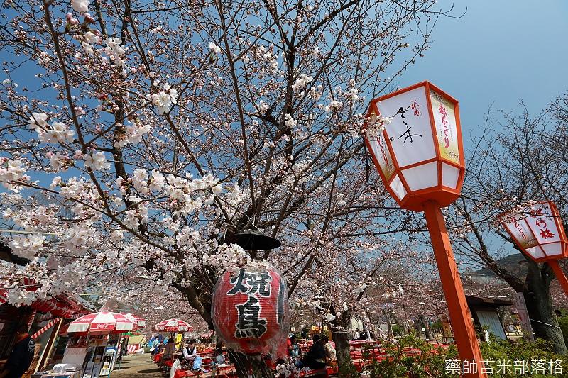 Kyoto_150330_0038.jpg