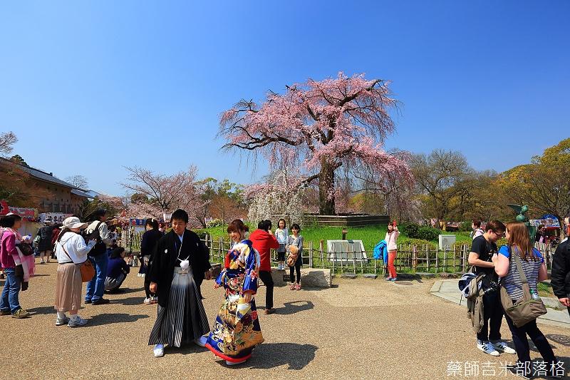 Kyoto_150330_0086.jpg
