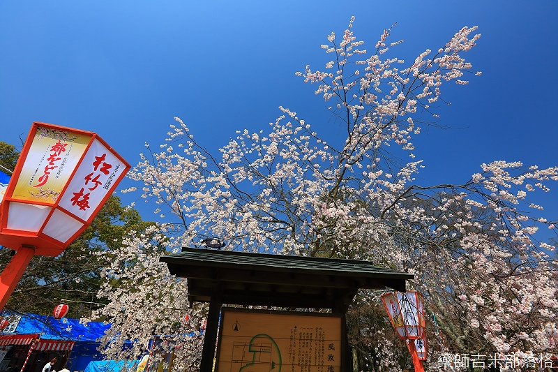 Kyoto_150330_0122.jpg