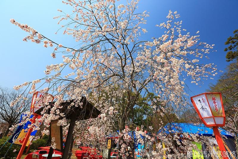 Kyoto_150330_0128.jpg