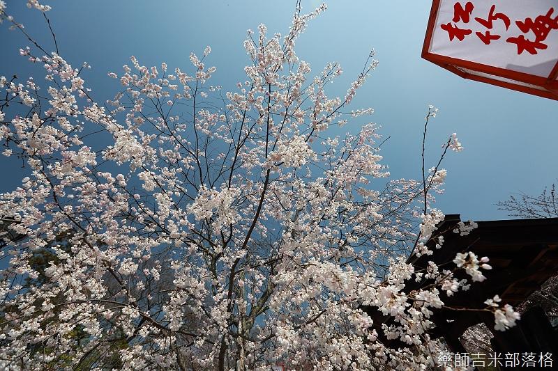 Kyoto_150330_0146.jpg