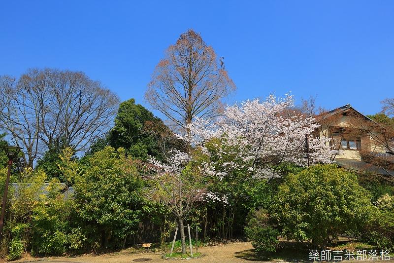 Kyoto_150330_0191.jpg
