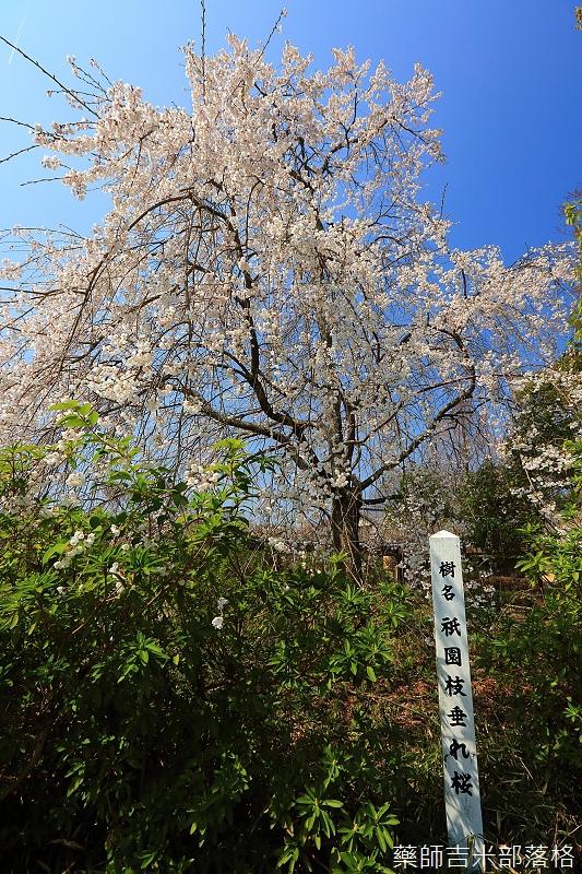 Kyoto_150330_0415.jpg