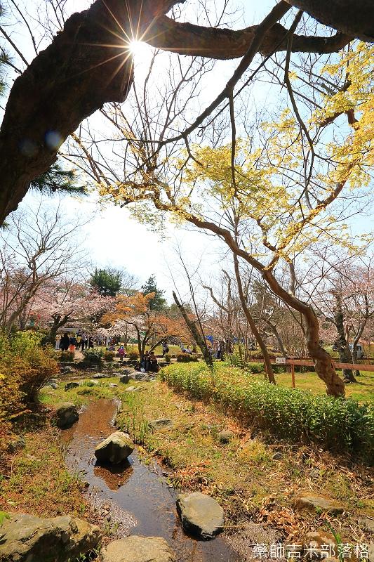 Kyoto_150330_0438.jpg